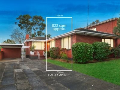 22 Halley Avenue Camberwell - 1